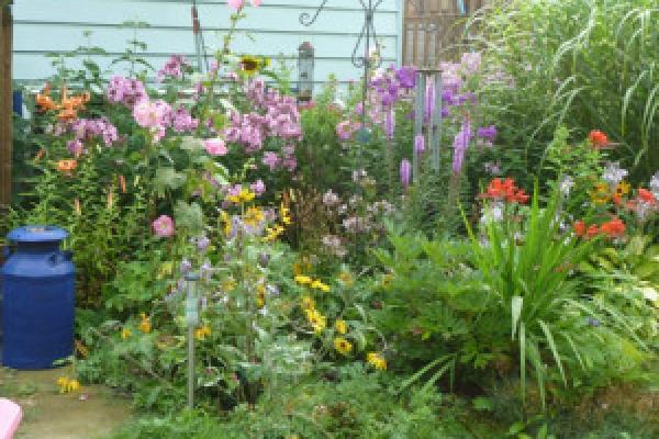 sage-gardens-P1000626-300×225
